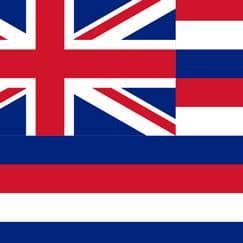 Hawaii Tema Festartikler