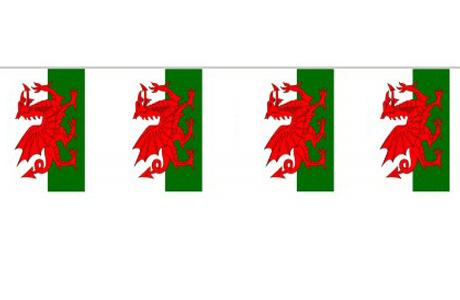 Wales Skt. Davids Dag Festartikler