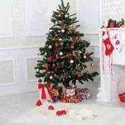 Julefrokost og Julefest Tema