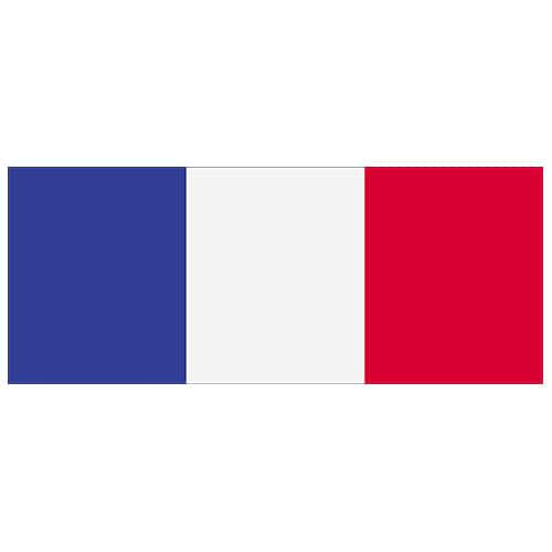 Frankrig Flag Vinyl Vægdekoration 60 x 24 cm - Single